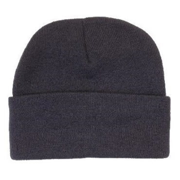 3059 Acrylic Beanie with Thinsulate Lining